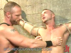 huge cock gay tied to the wall acquires cbt