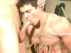 athletic gay boy at the gym tied by sado maso