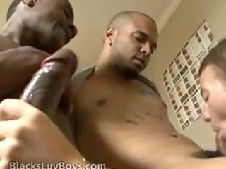 gay mixed cock sucking has two chocolate dicks