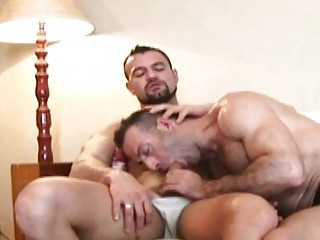 bearded cougar gay hunk blows difficult throbbing