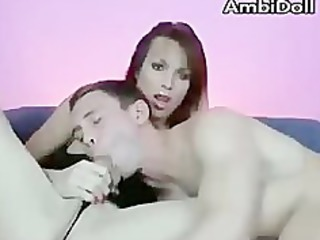 sloppy shemale tgirl cock sucking on cam