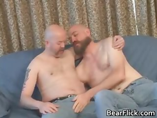 two gay boys suck uneasy  dick and own