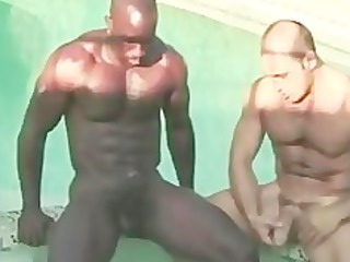 black slut ashen gay fuck gay sex gays gay