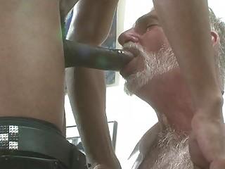 super bearded gay fellow slurps on big brown dick