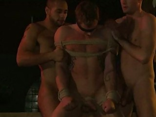 gay inside bondage takes kissed and sucked