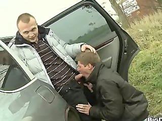 highway gay lovers bang roadside